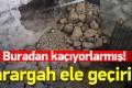 PKK'nın 2 karargahı bulundu