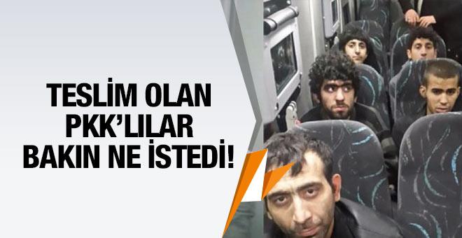 Diyarbakır'da teslim olan PKK'lılar askerlere yalvardı!